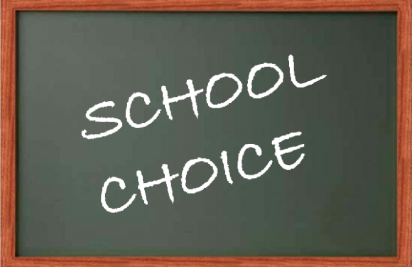 School Choice Educational Economics